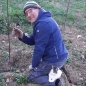 Profile photo of Francesco Senia