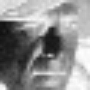 Profile photo of luigi